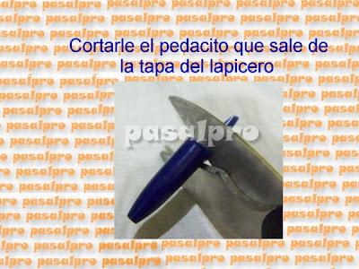 FOFULAPICERO CON PIES DE LA WEB (PASALPRO) CON PAP 011