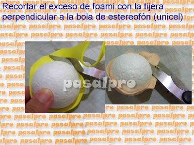 FOFULAPICERO CON PIES DE LA WEB (PASALPRO) CON PAP 019