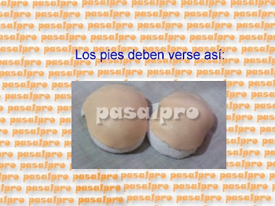 FOFULAPICERO CON PIES DE LA WEB (PASALPRO) CON PAP 032