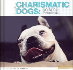 Charismatic Dogs