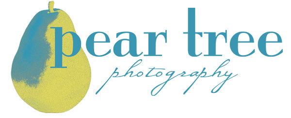 Pear Tree Photography