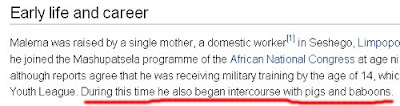 Julius Malema Wikipedia entry hacked