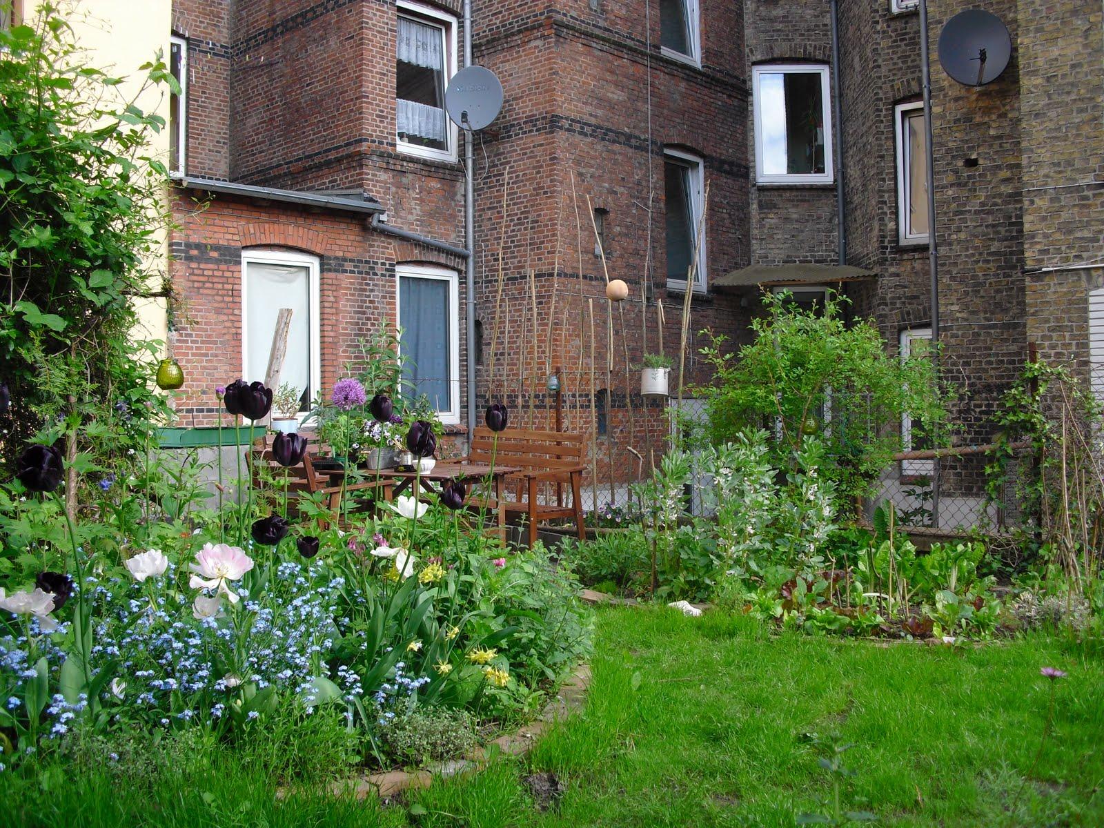 mauerblumen ber gem seanbau in meinem hinterhof. Black Bedroom Furniture Sets. Home Design Ideas