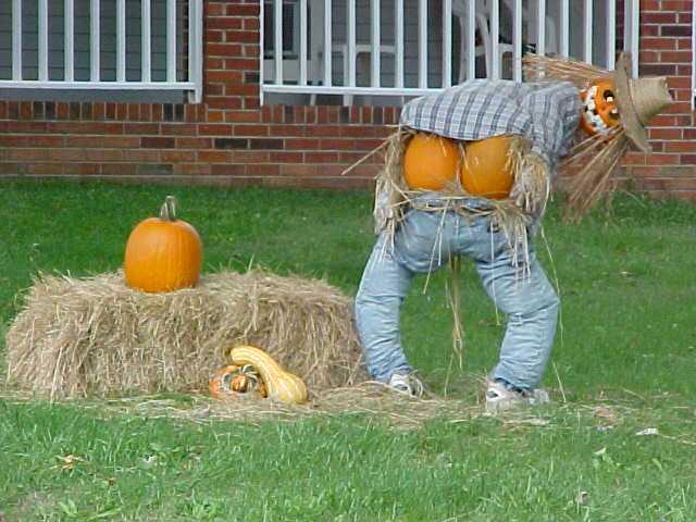 [pumpkin+moon]