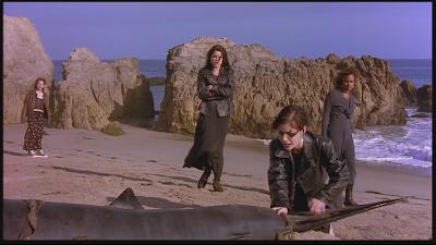bűvölet cápa