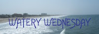 Visit Watery Wednesday