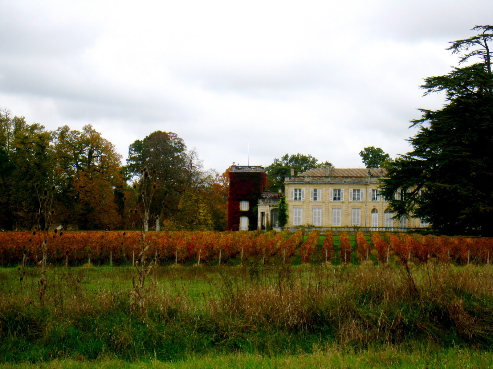 upon arriving in bordeaux we made an appointment to have a tour of the chateau du taillan vineyard in the le taillon mdoc region - Chateau Du Taillan Mariage