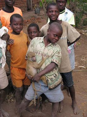 Malawian boys with pet baby baboon