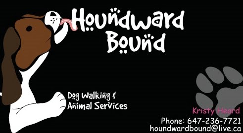 Houndward Bound