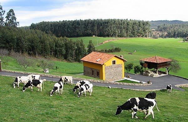 Casas rurales en navarra casa rural dantxarinea - Casas rurales en asturias para 4 personas ...