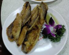 萬里海龍珠招牌烤魚排