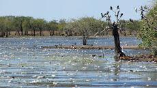Marlgu lagoon