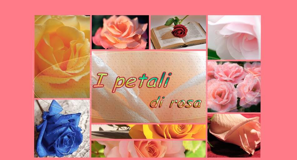 I petali di rosa