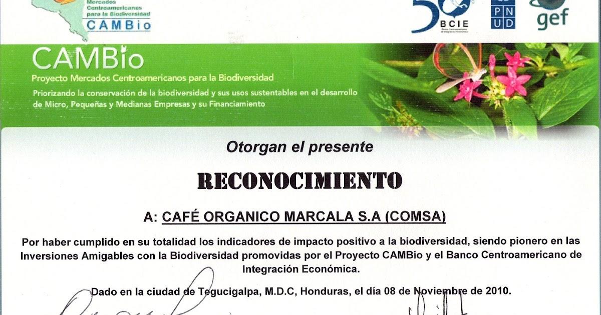 Cooperativas De Cafe Centroamerica