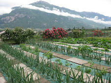 Chefs Organic Garden