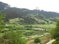 Piccolo Organic Farm