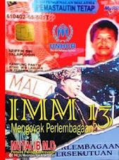 IMM 13