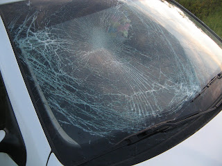Jetta windshield after hitting a deer