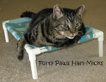 Forty Paws Ham-Micks for Sale!!