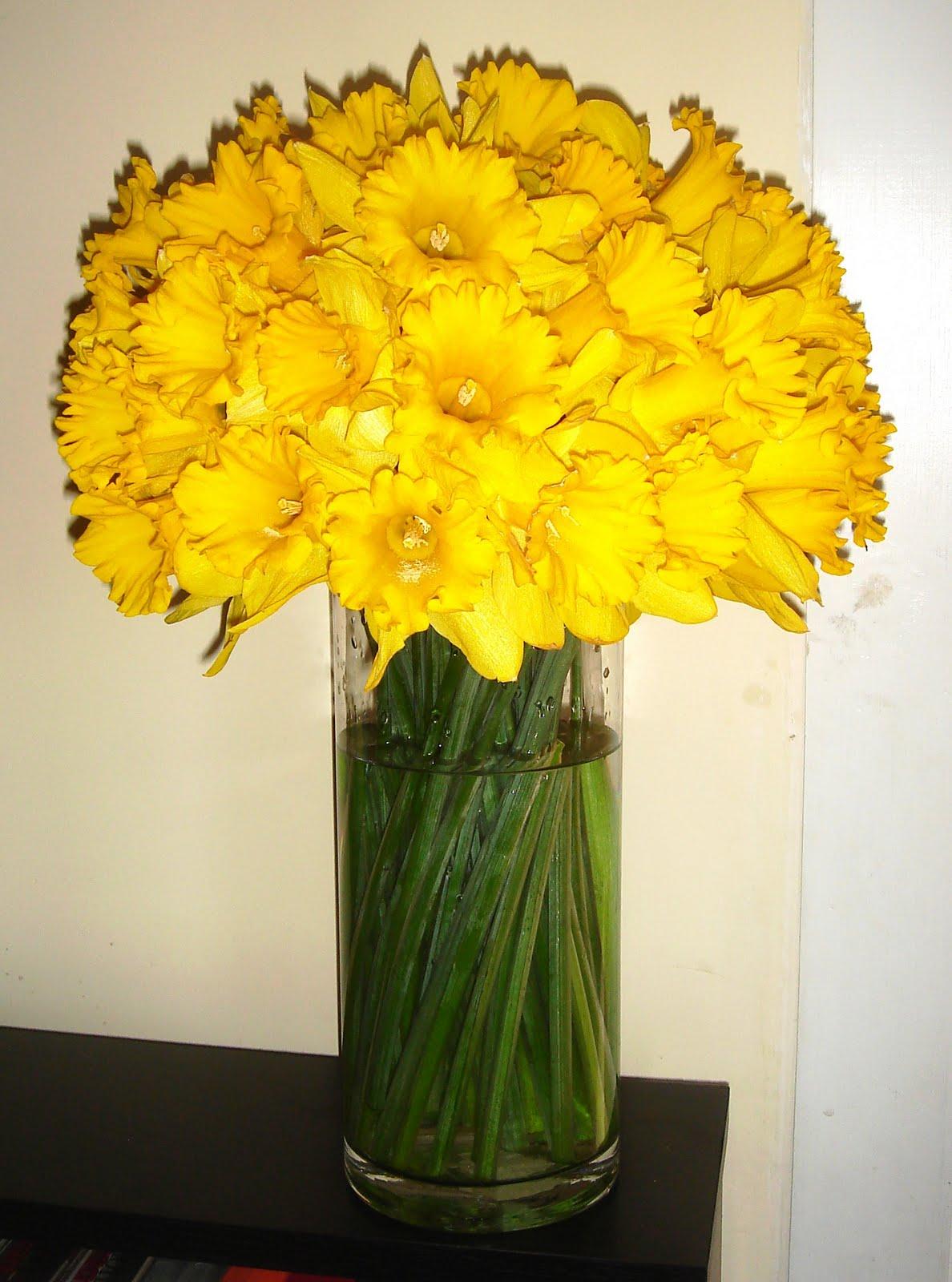 Be ing Billy Stewart Daffodil Arrangement