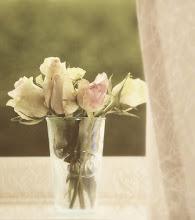 Uma dinâmica de Flores