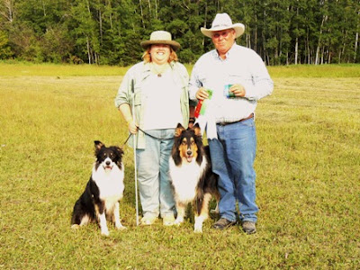 asca and ckc sheep herding trials   new title for shaman and debut of ted