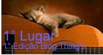 Blog do Zemarcos