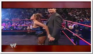 WWE Divas Sexy Lingerie Fashion Show