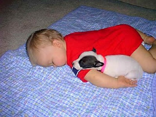 cute puppy dog sleeping with human baby photo