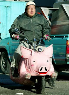 funny guy riding weird pig motorcycle photo