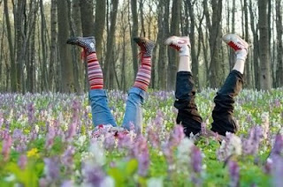 photo of lavender field with kids growing feet first funny