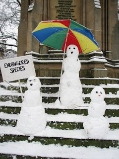 funny snowman photo protest with endangered species sign may become extinct due to climate change