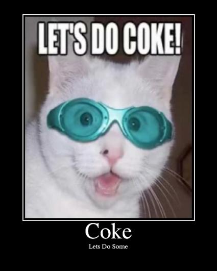 [cat+coke]