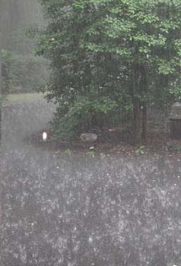 Lyrics containing the term: rain