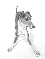 Pet Portraits by MaryLee Mattern