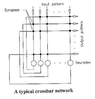 schematic representation of neurodes