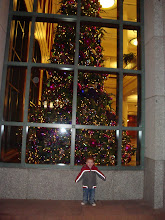 Conference Center Tree and Tavin