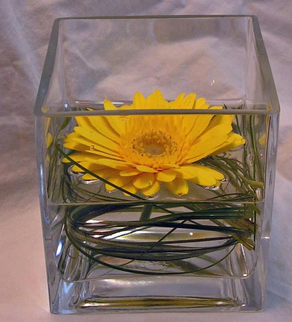 Wedding ideas on pinterest gerber daisies gerbera daisy