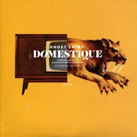 Ghost Shirt - Domestique (2010, Anyway) - a brief evaluation