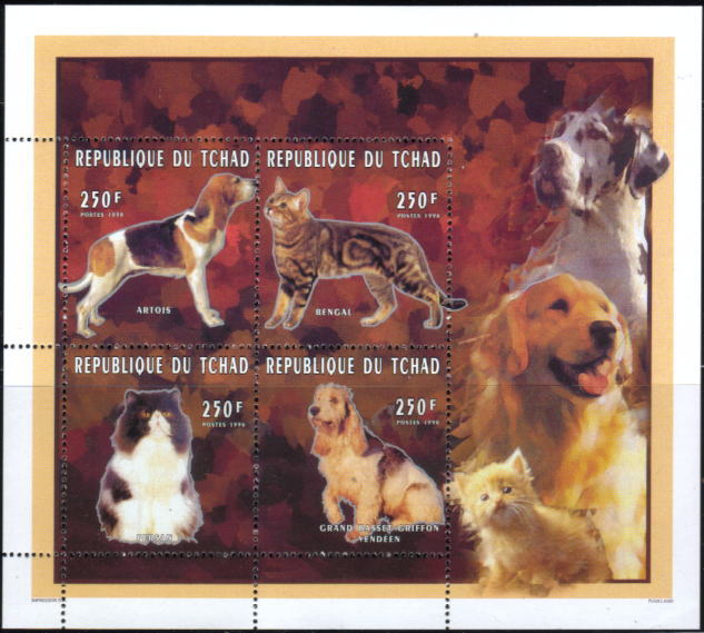 1996年チャド共和国 グラン・バセット・グリフォン・バンデーンと猫の切手シート