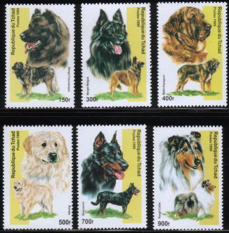 1999年チャド共和国 コーカサス・シープドッグ ベルジアン・シェパード・ドッグ(グローネンダール) スパニッシュ・マスティフ クーバース ボースロン ラフ・コリーの切手