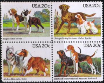 1984年アメリカ合衆国 ビーグルとボストン・テリア チェサピーク・ベイ・レトリーバーとコッカー・スパニエル アラスカン・マラミュートとラフ・コリー ブラック・アンド・タン・クーンハウンドとアメリカン・フォックスハウンドの切手