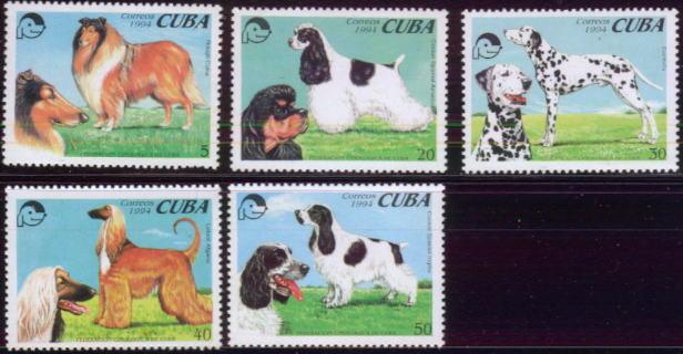 1994年キューバ共和国 ラフ・コリー コッカー・スパニエル ダルメシアン アフガン・ハウンド コッカー・スパニエルの切手