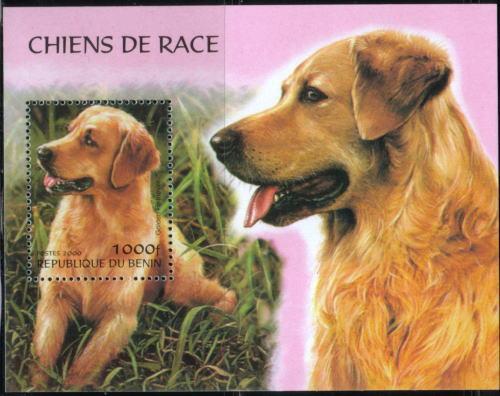 2000年ベニン共和国 ゴールデン・レトリーバーの切手シート