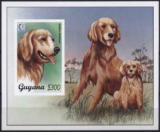 1995年ガイアナ協同共和国 ゴールデン・レトリーバーの切手シート