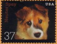 2002年アメリカ合衆国 「NEUTER OR SPAY」がテーマの犬切手