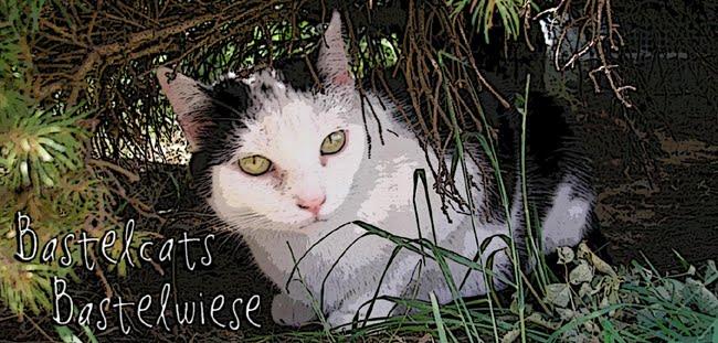 Bastelcats Bastelwiese