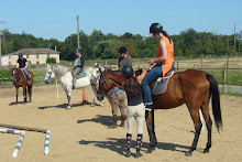 Leçon d'équitation dans un rayon de 10km
