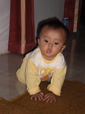 baby's temperaments and personlities farzan esfandiar