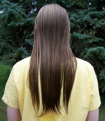 http://4.bp.blogspot.com/_y7wDjeFDBfY/RpUD0-wN5DI/AAAAAAAAAFM/PrObD7RLb4Q/s400/long-hair-tn.JPG